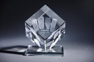 PEERS Foerderpreis Pokal