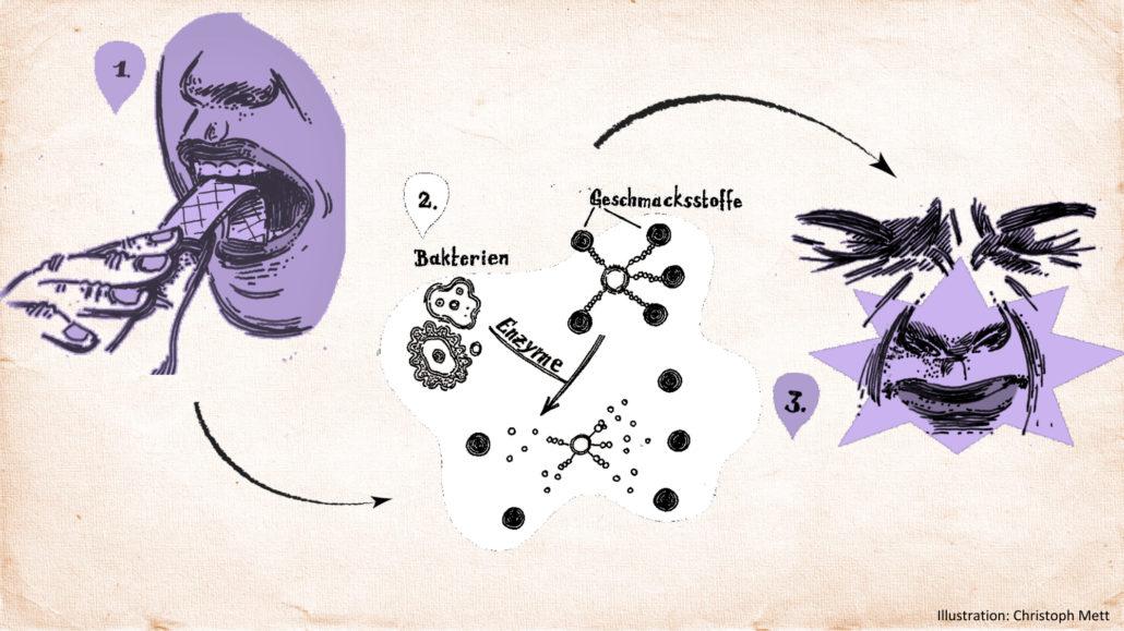 Illustration der Diagnose per Kaugummi (Urheber: Christoph Mett)