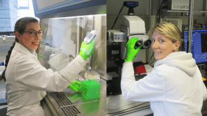 Dr. Laura Zorzetto, Biomedizintechnikerin am MPIKG und Dr. Cécile Bidan, Materialwissenschaftlerin und Gruppenleiterin in der Abteilung Biomaterialien am MPIKG